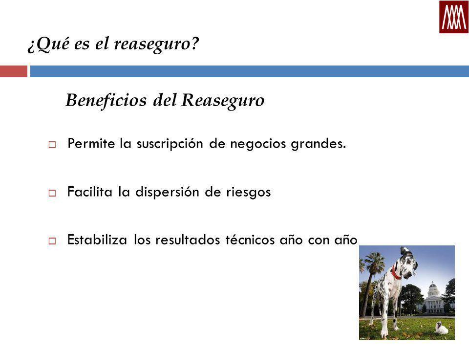 Beneficios del Reaseguro