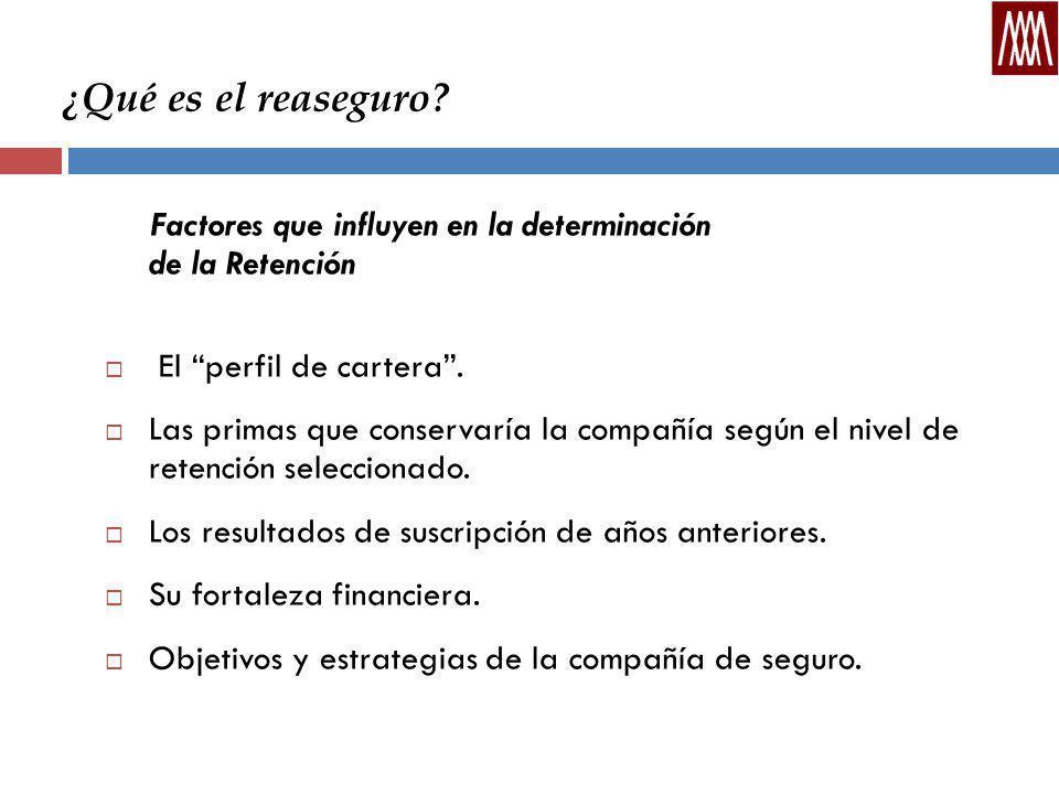 ¿Qué es el reaseguro Factores que influyen en la determinación de la Retención. El perfil de cartera .