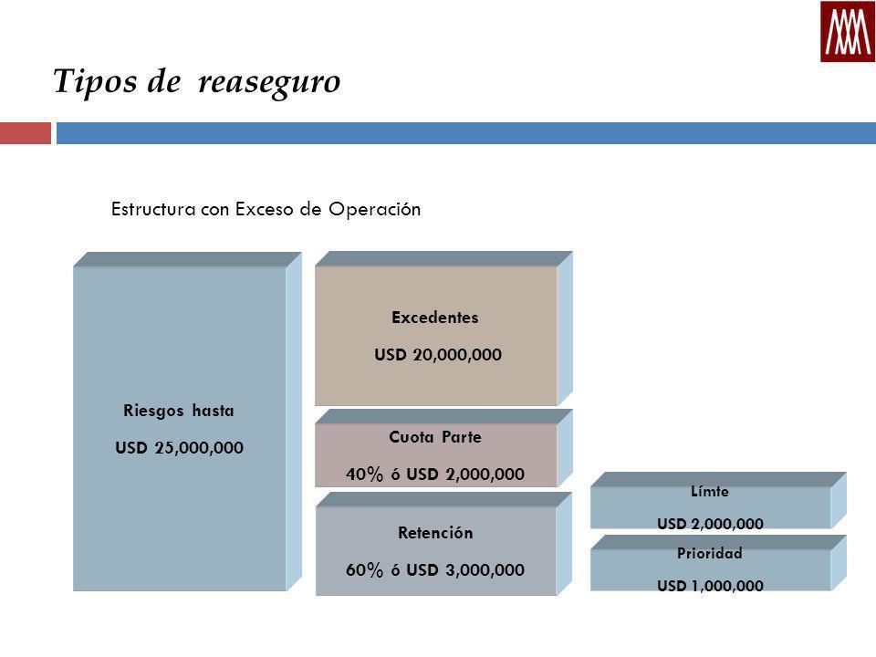 Tipos de reaseguro Estructura con Exceso de Operación Excedentes