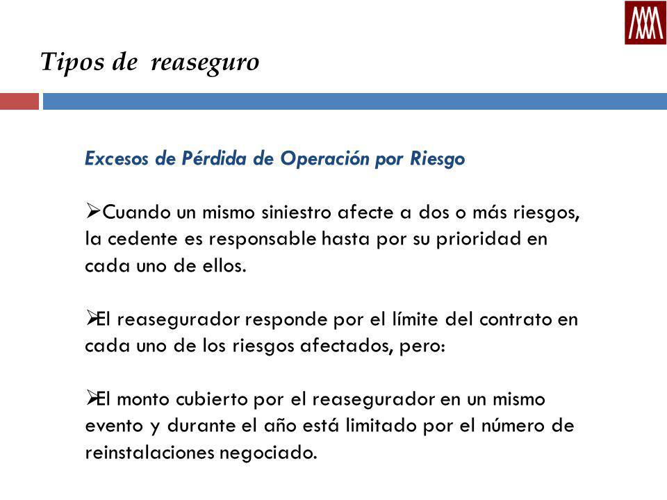 Tipos de reaseguro Excesos de Pérdida de Operación por Riesgo