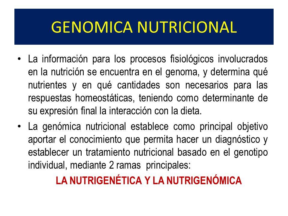 LA NUTRIGENÉTICA Y LA NUTRIGENÓMICA