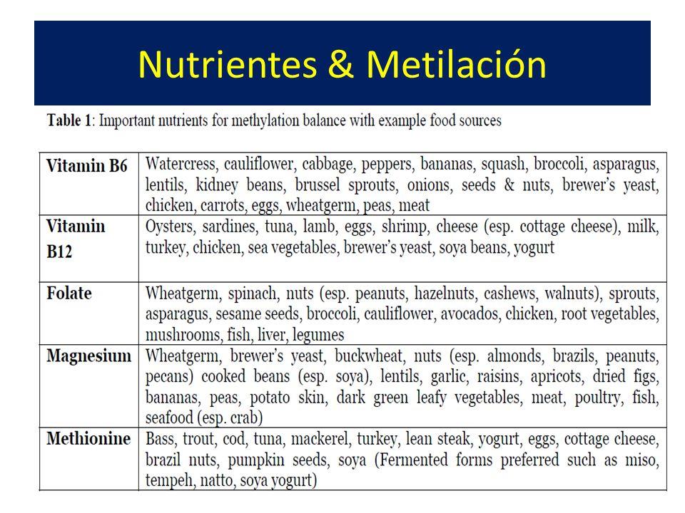 Nutrientes & Metilación