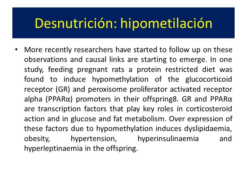 Desnutrición: hipometilación