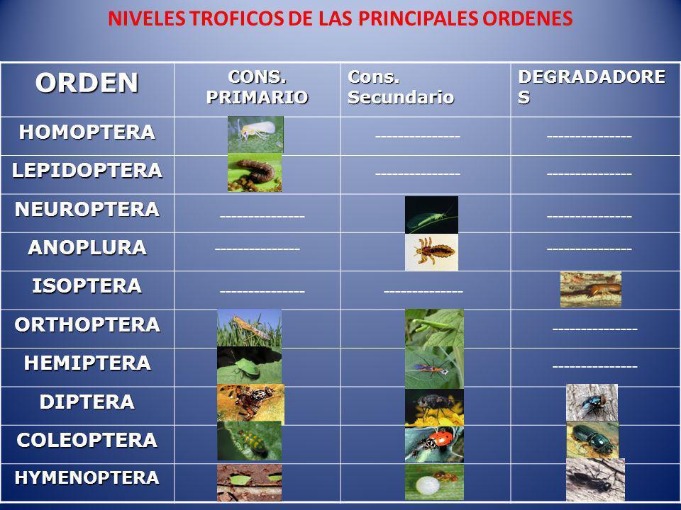 NIVELES TROFICOS DE LAS PRINCIPALES ORDENES