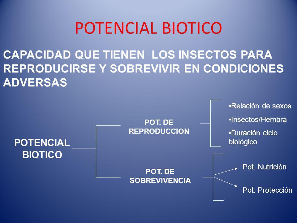 POTENCIAL BIOTICO CAPACIDAD QUE TIENEN LOS INSECTOS PARA REPRODUCIRSE Y SOBREVIVIR EN CONDICIONES ADVERSAS.