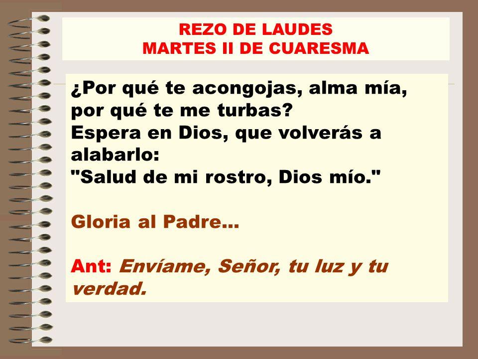 Ant: Envíame, Señor, tu luz y tu verdad.