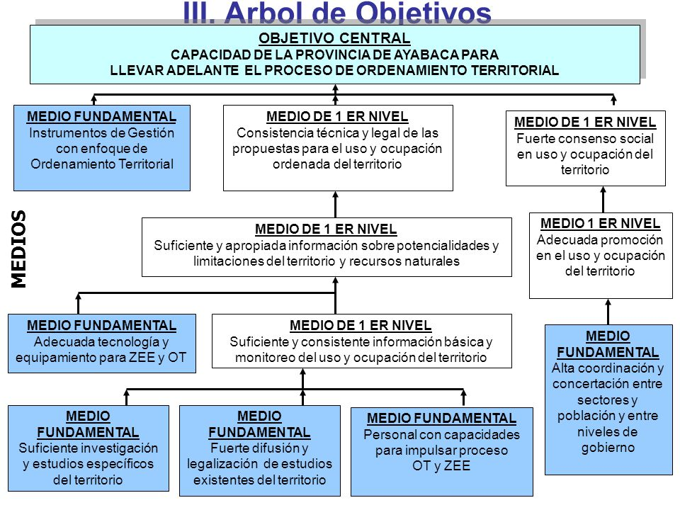III. Arbol de Objetivos MEDIOS OBJETIVO CENTRAL
