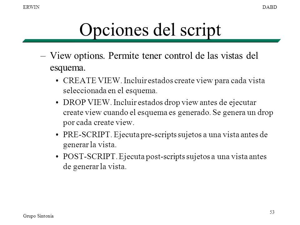 Opciones del script View options. Permite tener control de las vistas del esquema.