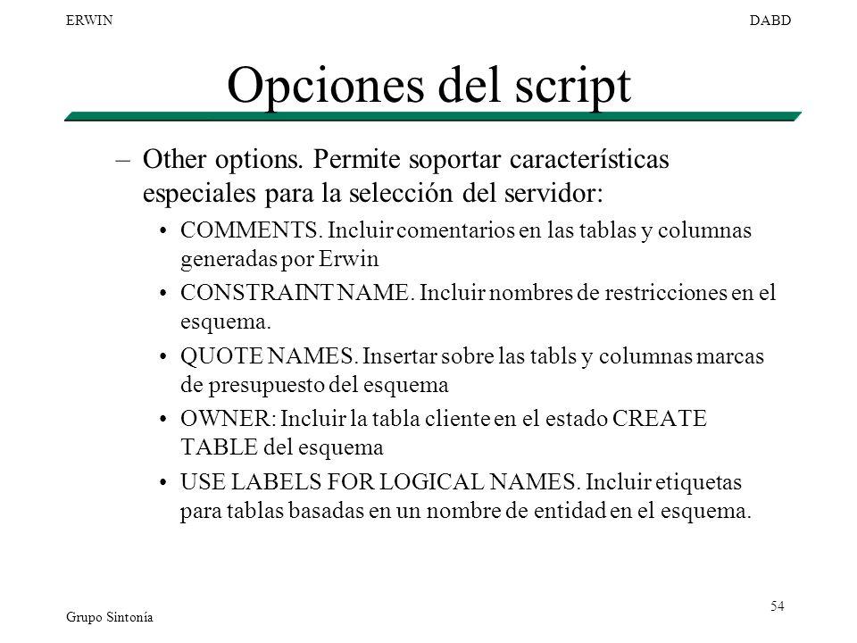 Opciones del script Other options. Permite soportar características especiales para la selección del servidor: