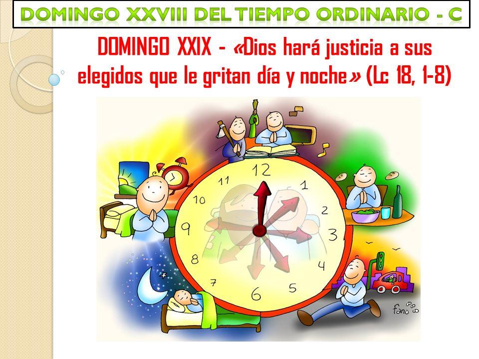 Domingo xxviii del tiempo ordinario - c
