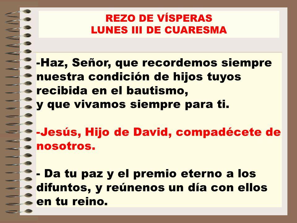 Jesús, Hijo de David, compadécete de nosotros.