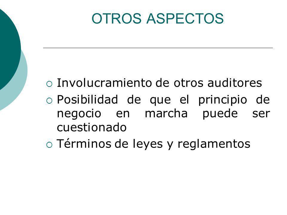 OTROS ASPECTOS Involucramiento de otros auditores