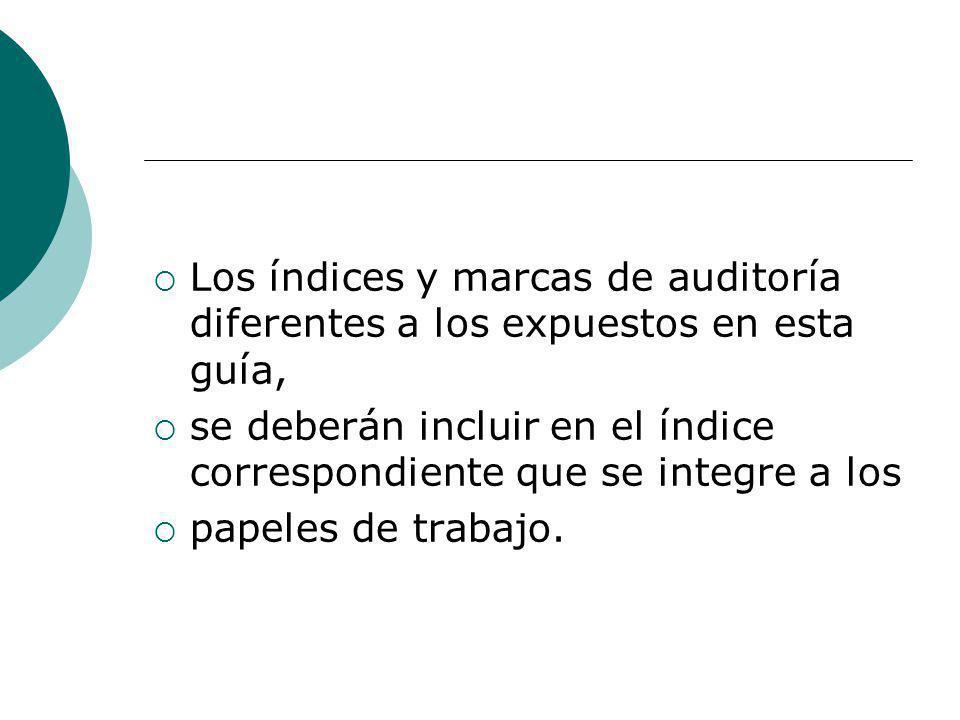 Los índices y marcas de auditoría diferentes a los expuestos en esta guía,