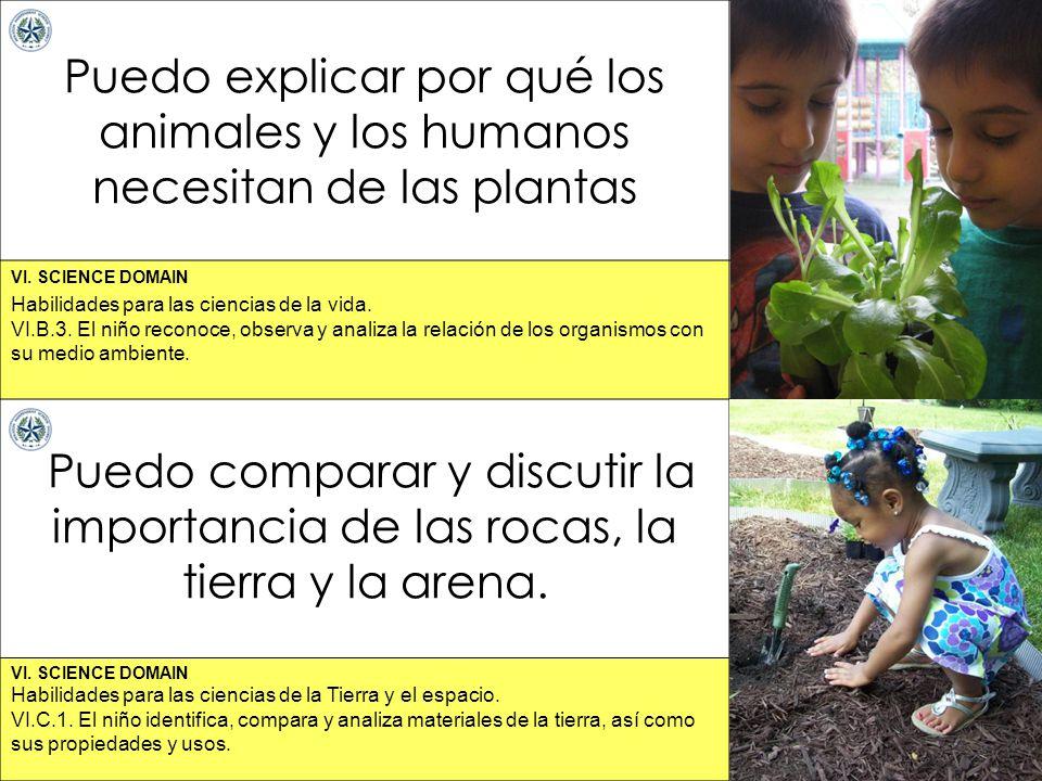 Puedo explicar por qué los animales y los humanos necesitan de las plantas
