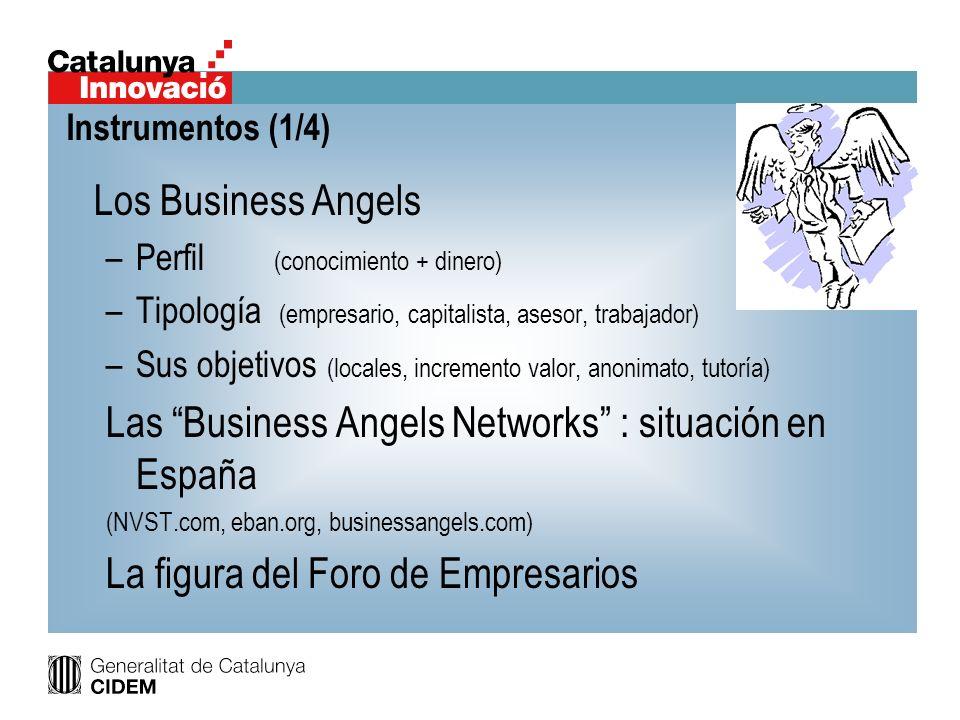 Las Business Angels Networks : situación en España