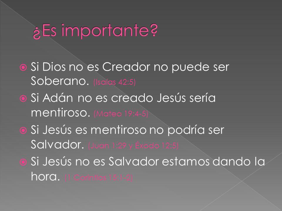 ¿Es importante Si Dios no es Creador no puede ser Soberano. (Isaías 42:5) Si Adán no es creado Jesús sería mentiroso. (Mateo 19:4-5)