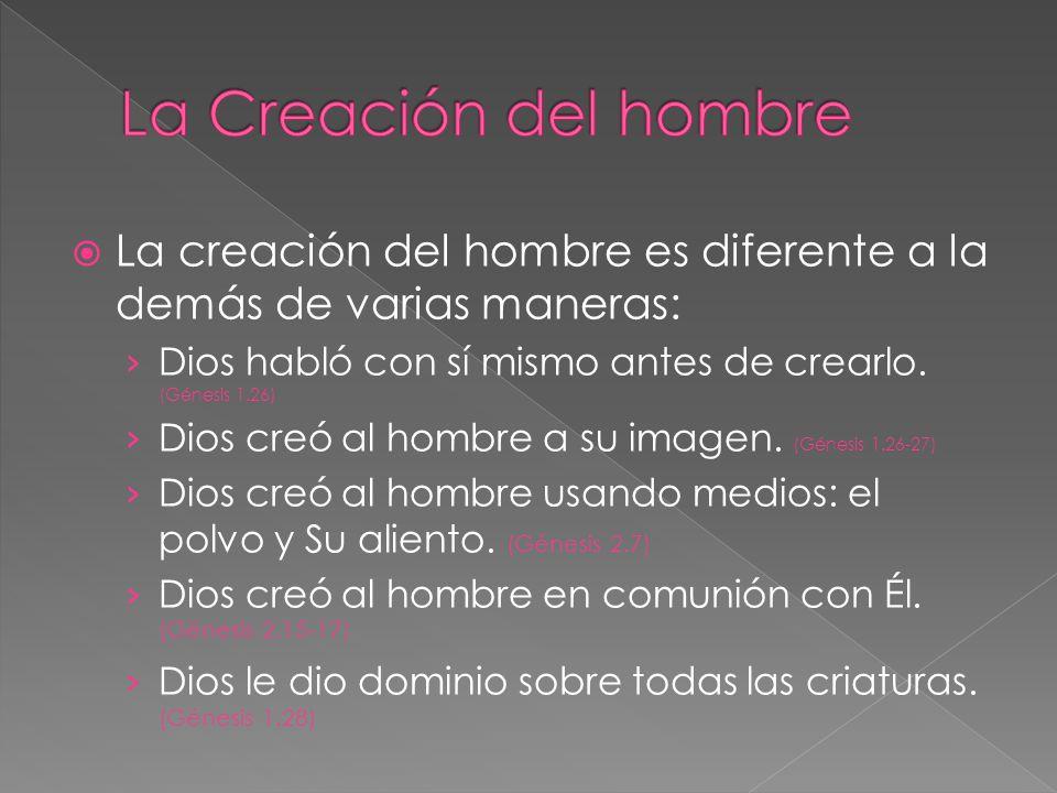 La Creación del hombre La creación del hombre es diferente a la demás de varias maneras: Dios habló con sí mismo antes de crearlo. (Génesis 1.26)