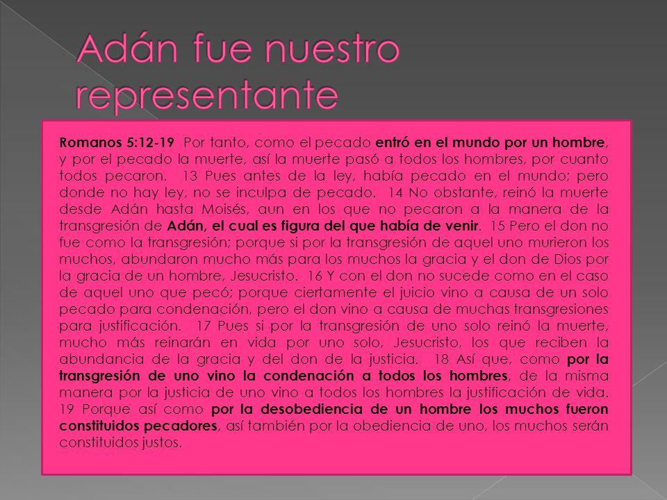 Adán fue nuestro representante