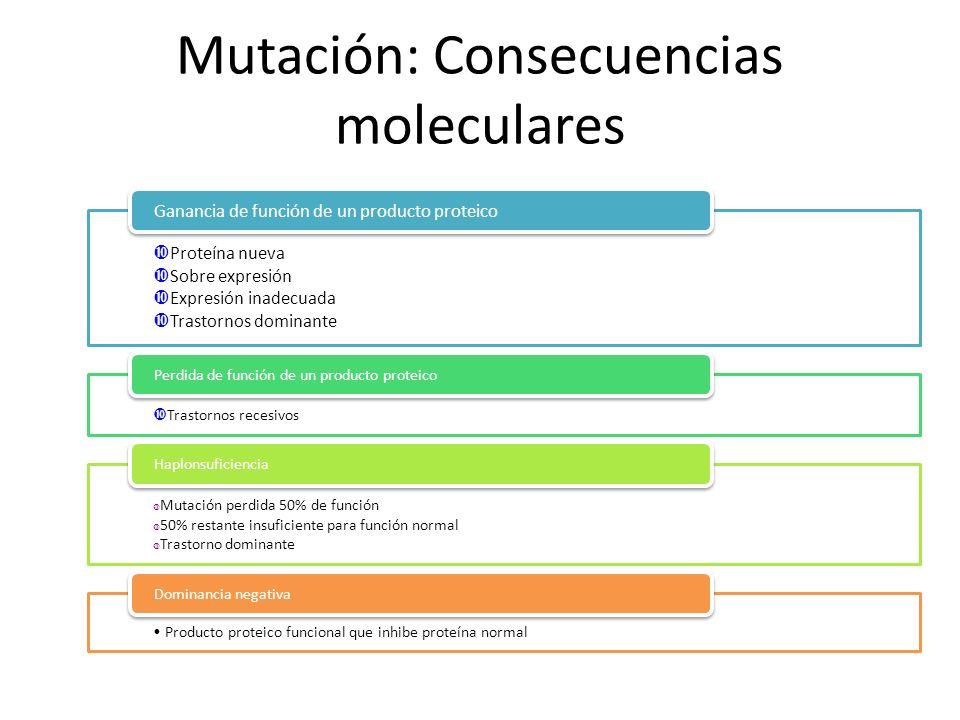 Mutación: Consecuencias moleculares