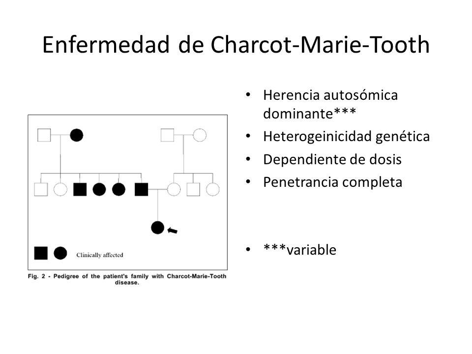 Enfermedad de Charcot-Marie-Tooth