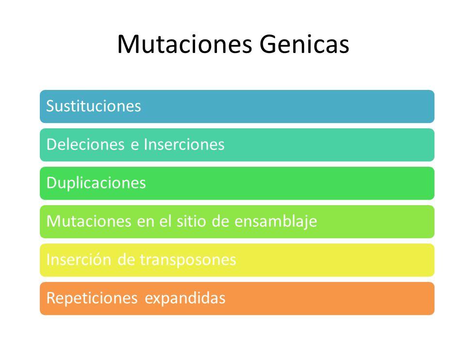 Mutaciones Genicas Sustituciones Deleciones e Inserciones