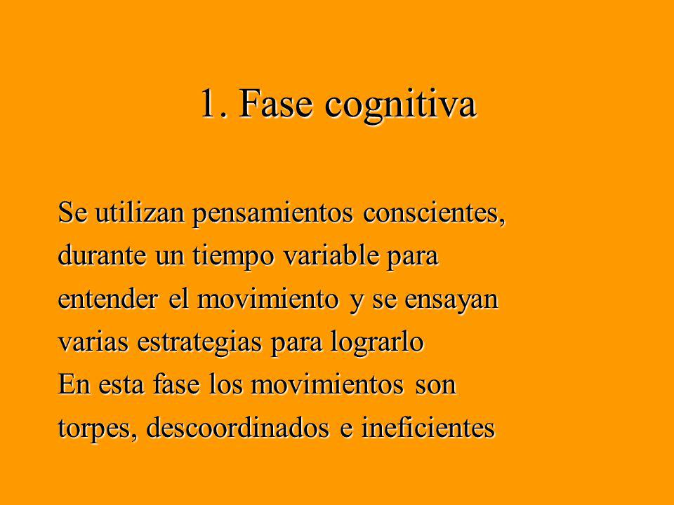 1. Fase cognitiva