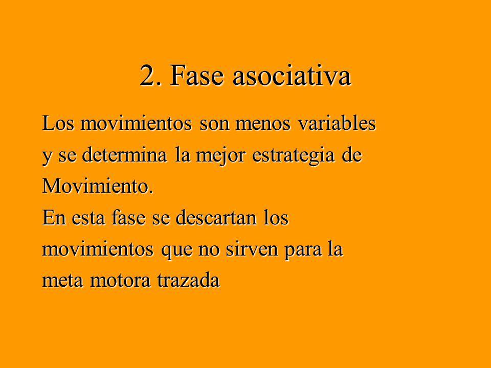 2. Fase asociativa
