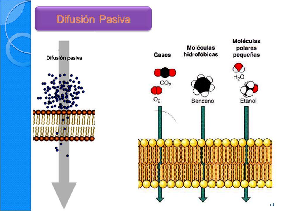 Difusión Pasiva Mecanismo mas sencillo de atravesar