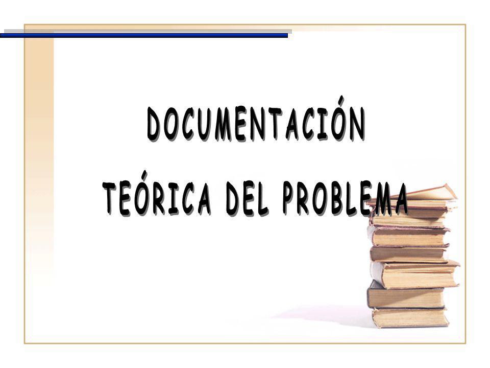 DOCUMENTACIÓN TEÓRICA DEL PROBLEMA
