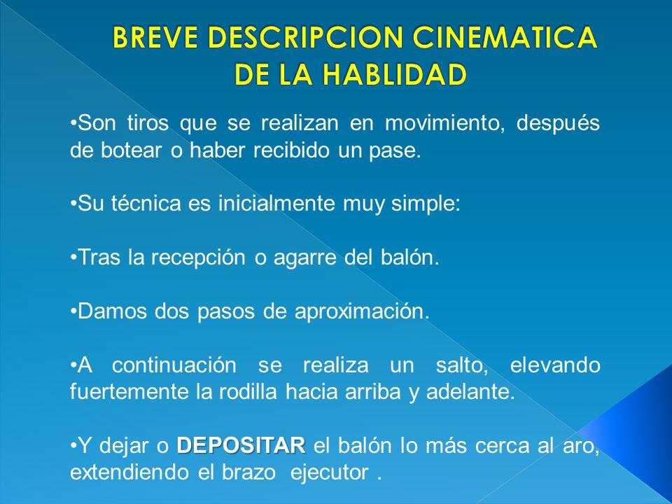 BREVE DESCRIPCION CINEMATICA DE LA HABLIDAD