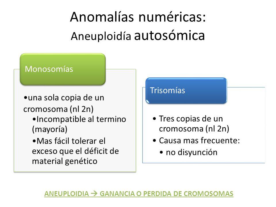 Anomalías numéricas: Aneuploidía autosómica