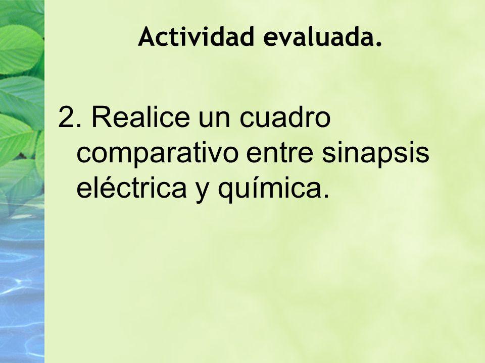 2. Realice un cuadro comparativo entre sinapsis eléctrica y química.