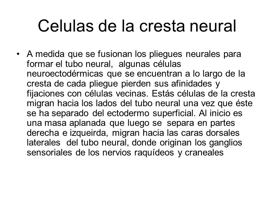 Celulas de la cresta neural