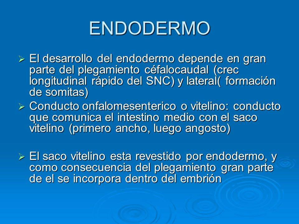 ENDODERMO