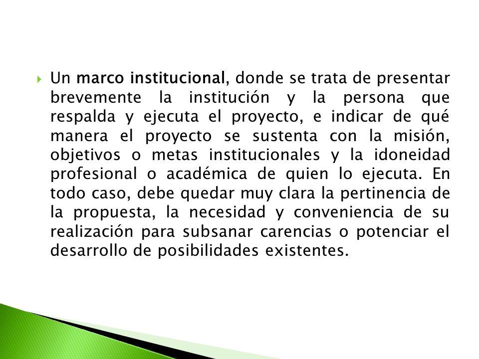Un marco institucional, donde se trata de presentar brevemente la institución y la persona que respalda y ejecuta el proyecto, e indicar de qué manera el proyecto se sustenta con la misión, objetivos o metas institucionales y la idoneidad profesional o académica de quien lo ejecuta.