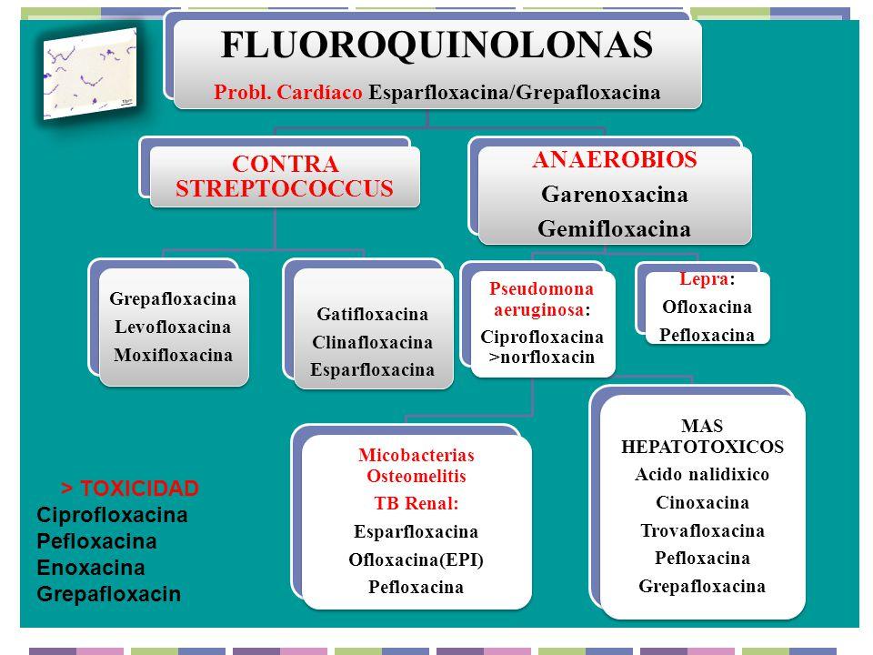 FLUOROQUINOLONAS CONTRA STREPTOCOCCUS ANAEROBIOS Garenoxacina