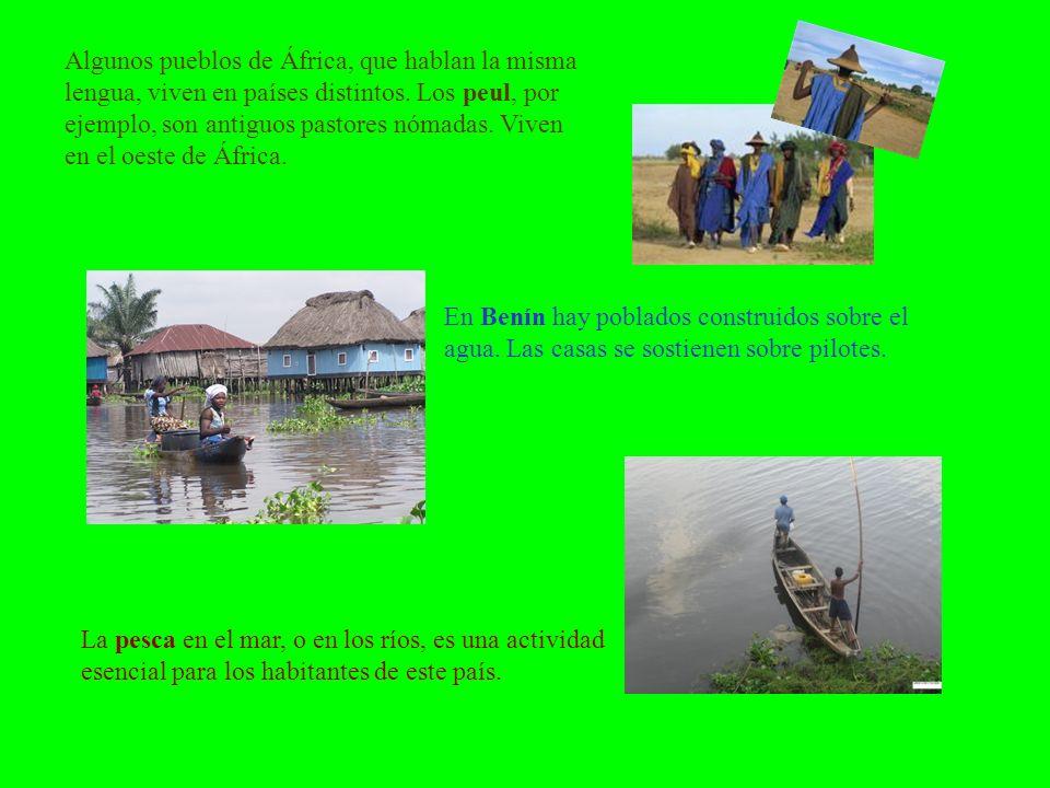 Algunos pueblos de África, que hablan la misma lengua, viven en países distintos. Los peul, por ejemplo, son antiguos pastores nómadas. Viven en el oeste de África.