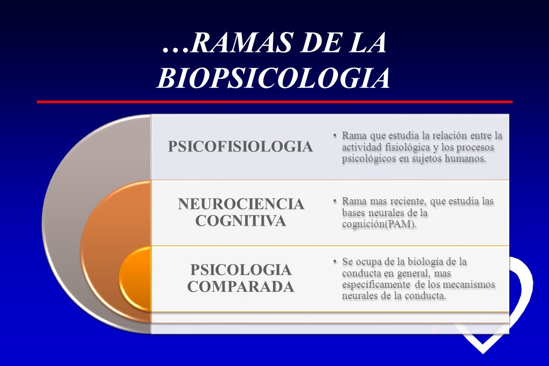 …RAMAS DE LA BIOPSICOLOGIA
