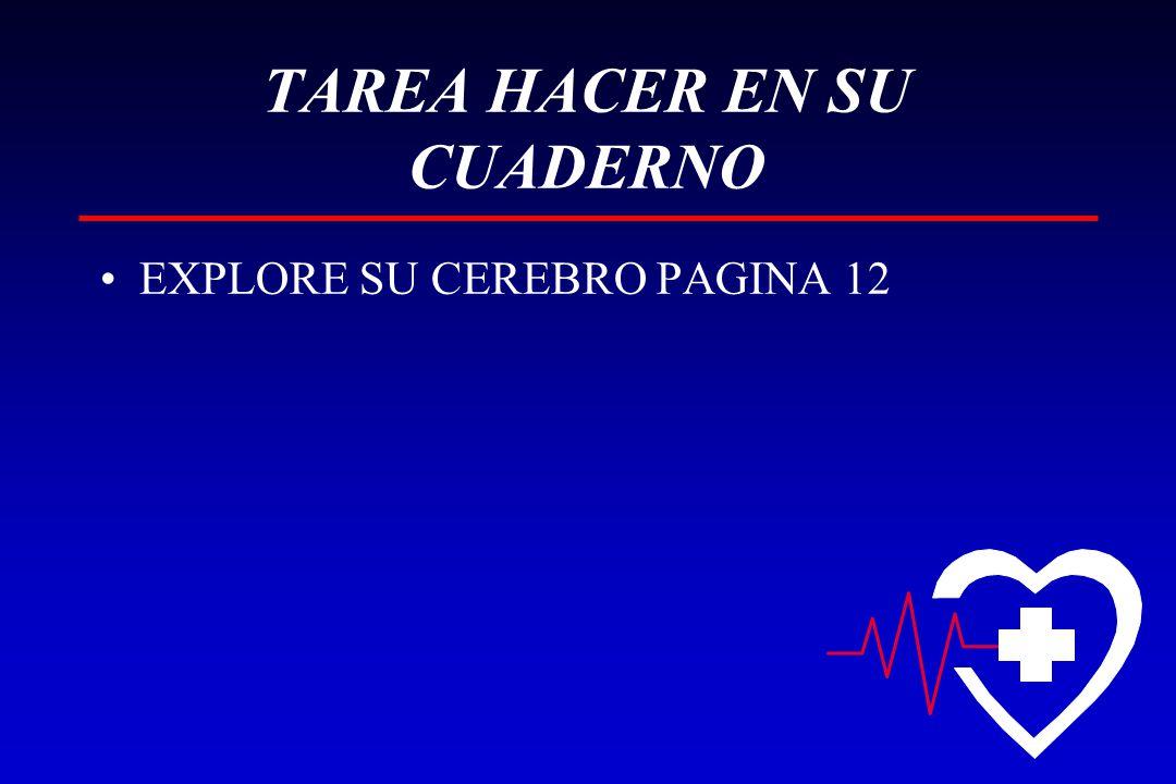 TAREA HACER EN SU CUADERNO
