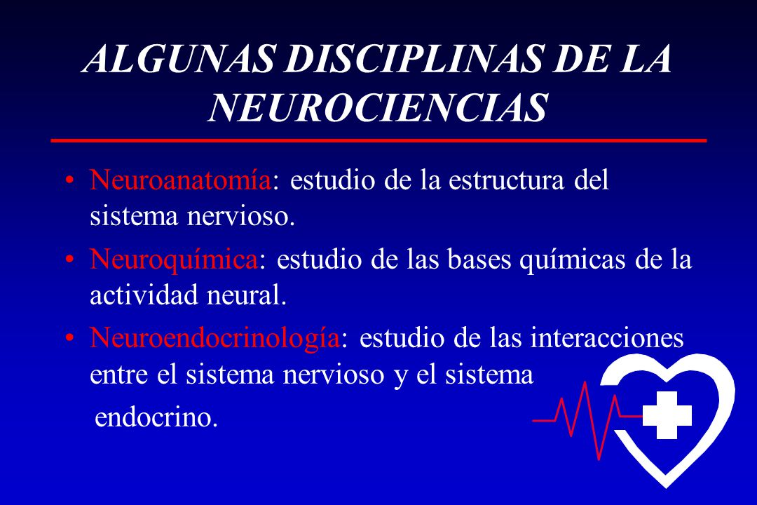 ALGUNAS DISCIPLINAS DE LA NEUROCIENCIAS