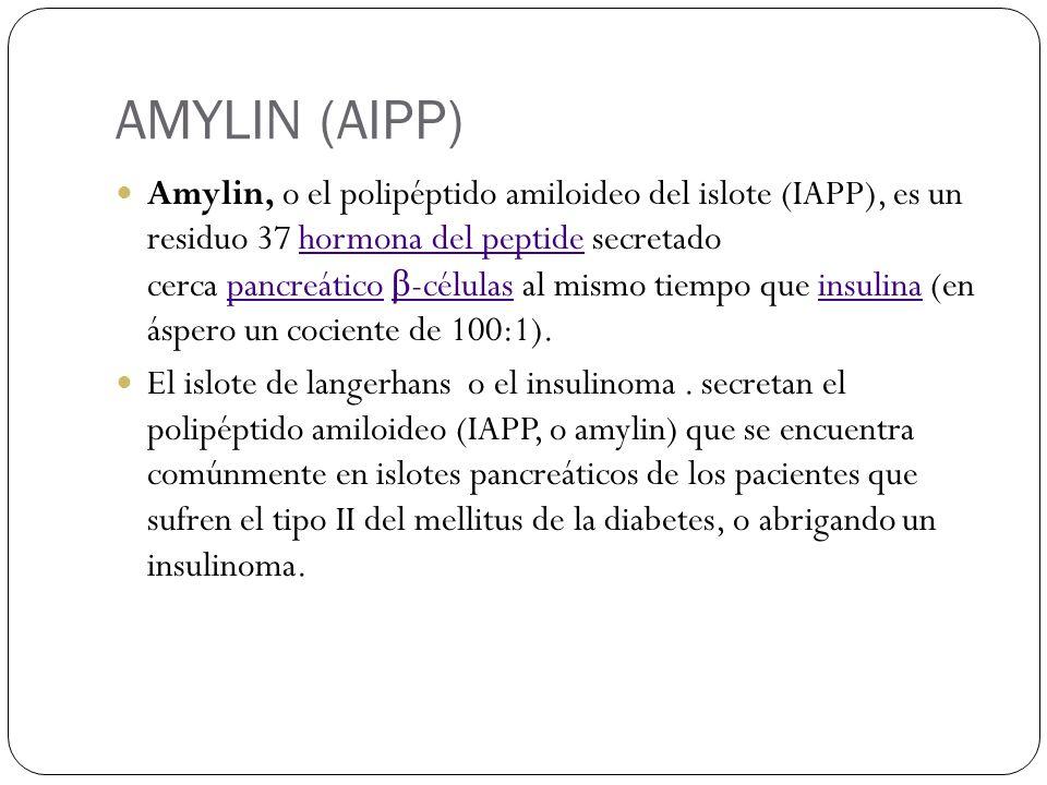 AMYLIN (AIPP)