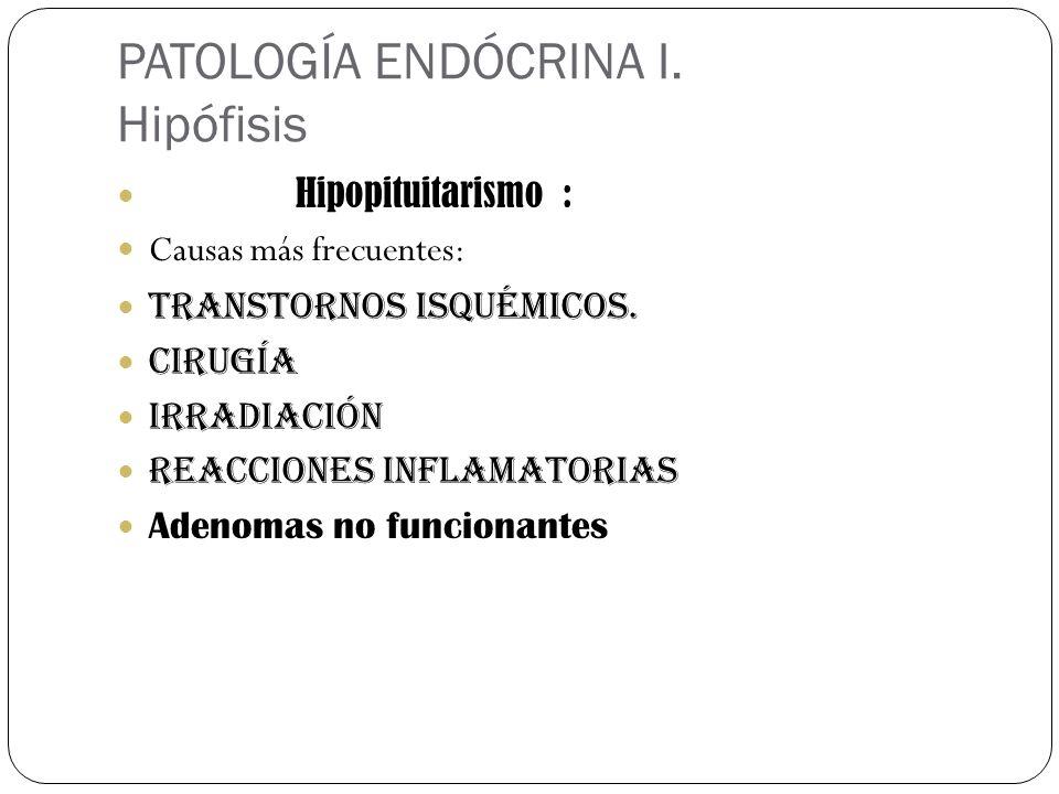 PATOLOGÍA ENDÓCRINA I. Hipófisis