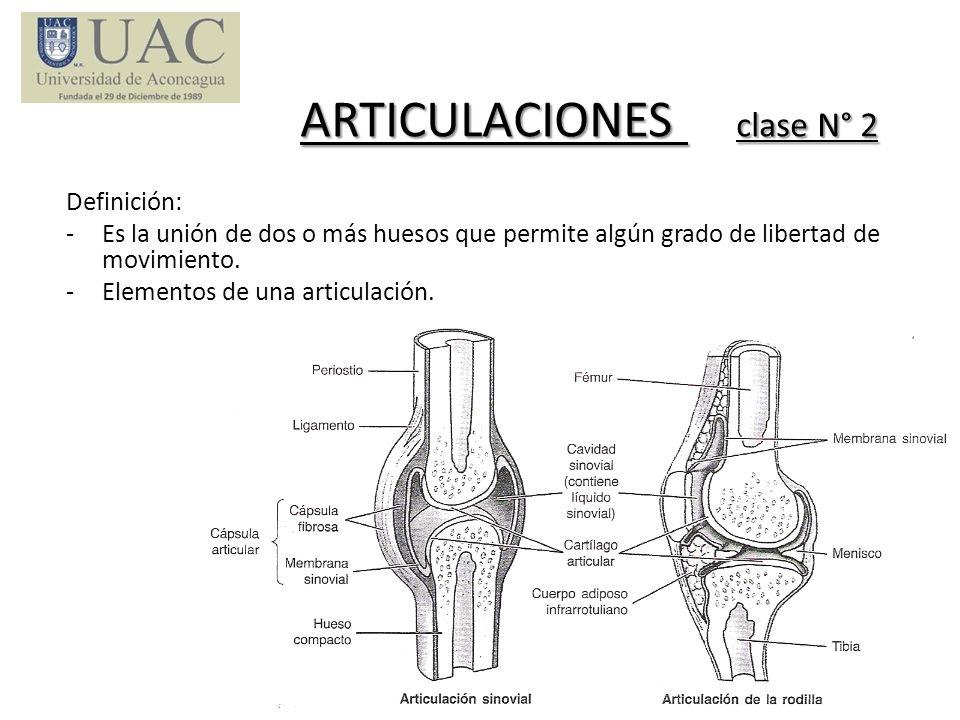 ARTICULACIONES clase N° 2