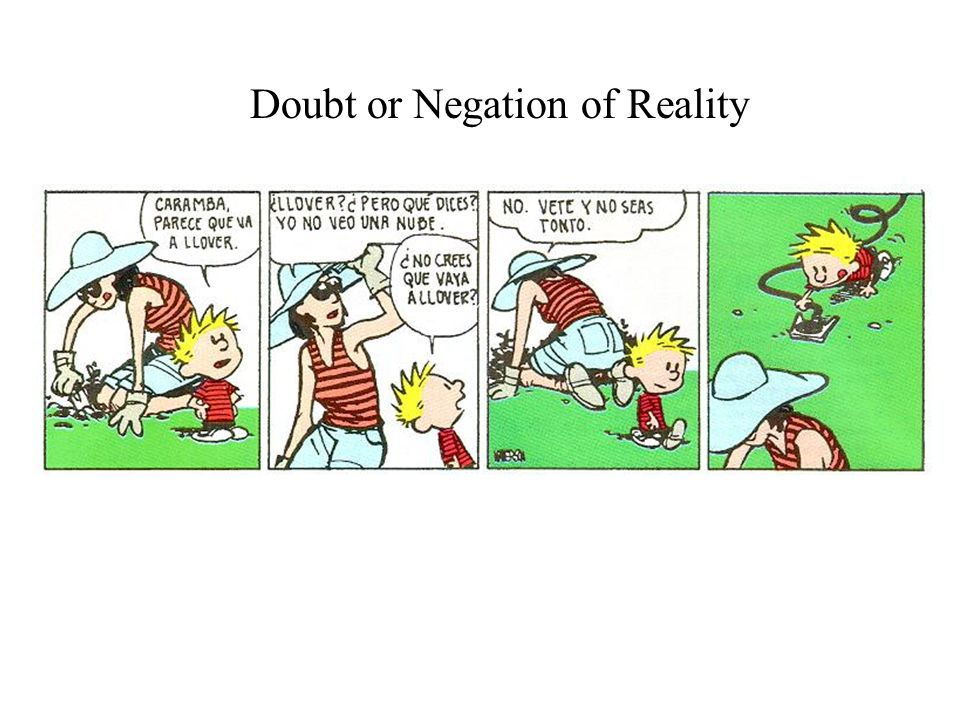 Doubt or Negation of Reality