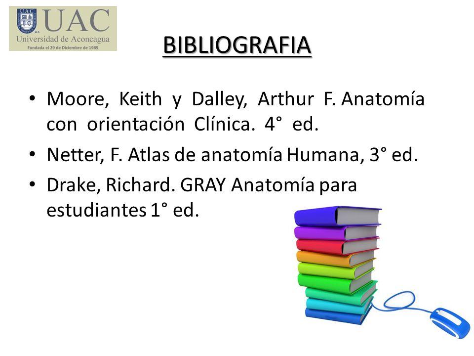 BIBLIOGRAFIA Moore, Keith y Dalley, Arthur F. Anatomía con orientación Clínica. 4° ed. Netter, F. Atlas de anatomía Humana, 3° ed.