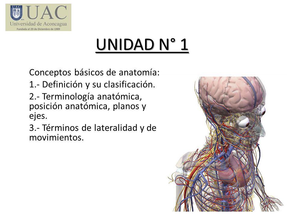 UNIDAD N° 1 Conceptos básicos de anatomía: