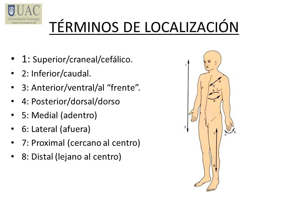TÉRMINOS DE LOCALIZACIÓN