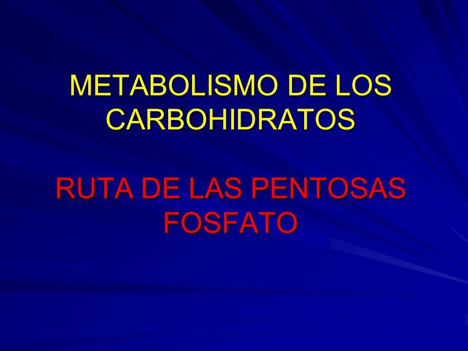 METABOLISMO DE LOS CARBOHIDRATOS RUTA DE LAS PENTOSAS FOSFATO