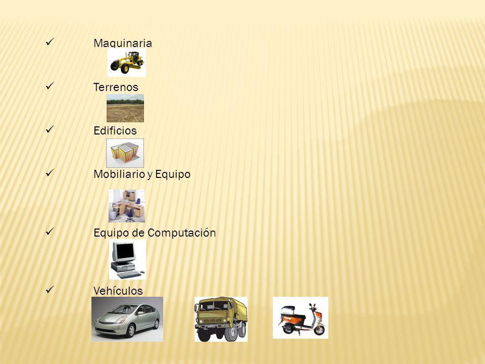 Maquinaria Terrenos Edificios Mobiliario y Equipo Equipo de Computación Vehículos