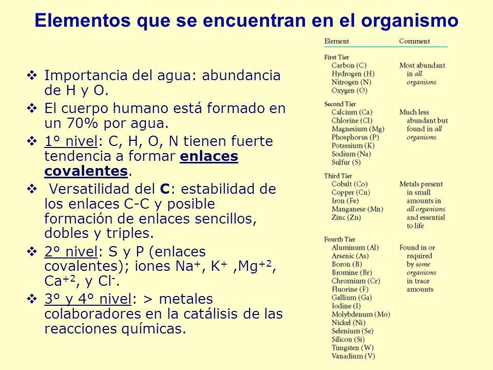 Elementos que se encuentran en el organismo